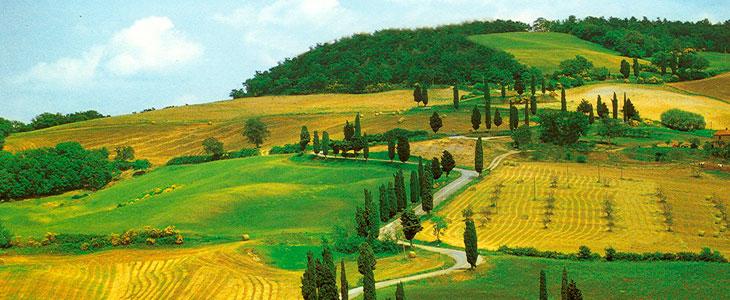 Degustazione Toscana