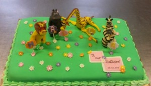 torta-compleanno035